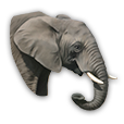 warelephant.png