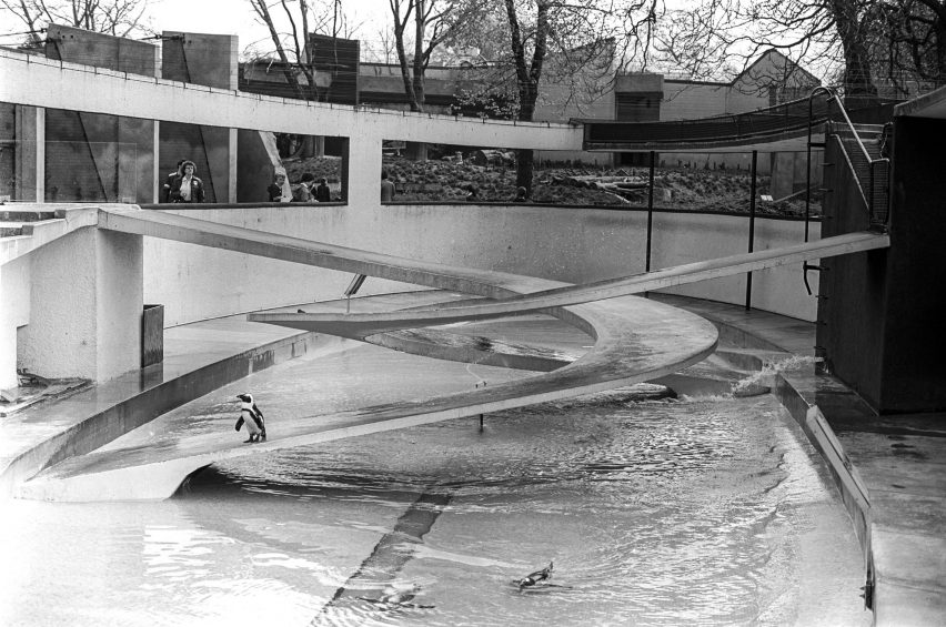 lubetkin-penguin-pool.jpg