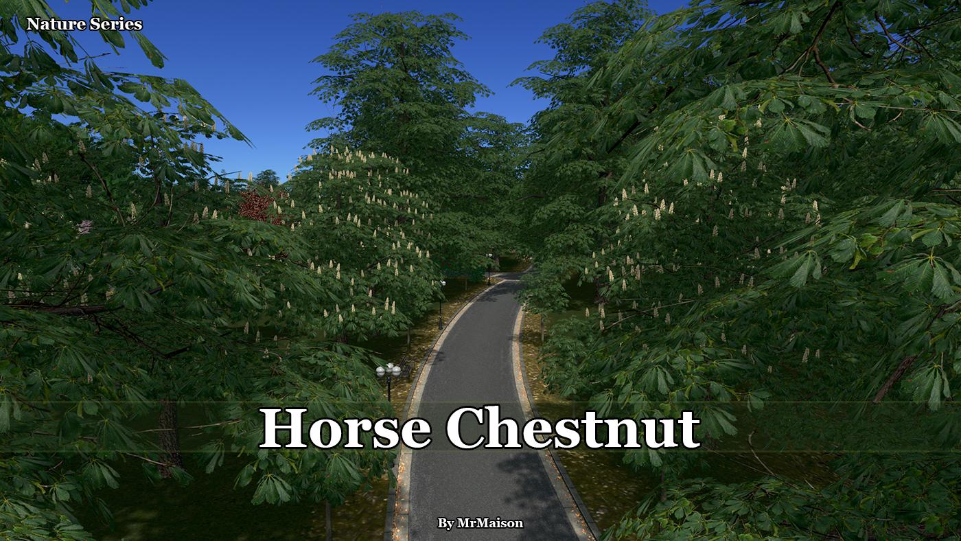 HorseChestnutPromo.jpg